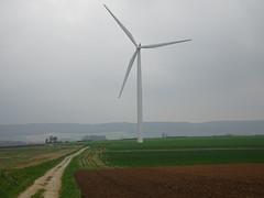 Hermin le  parc éolien  (9)