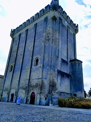 LE DONJON DE PONS - Photo of Villars-en-Pons