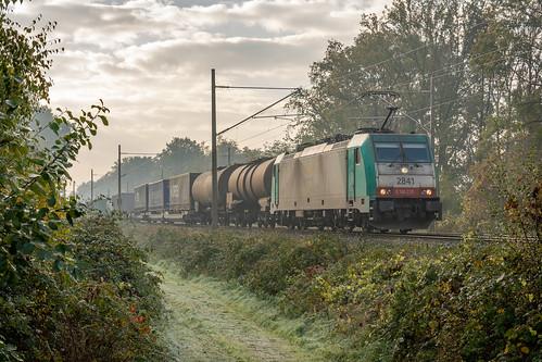 Elten Lineas 2841 (186 233) met container-trailer-keteltrein Antwerpen