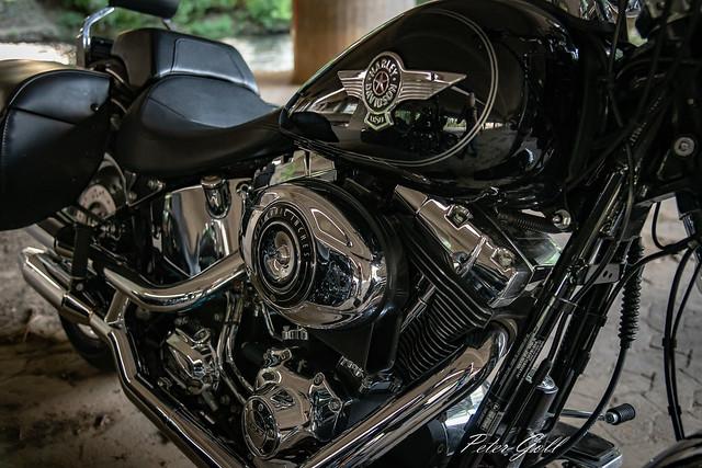 Harley Davidson - Großraumiker 174