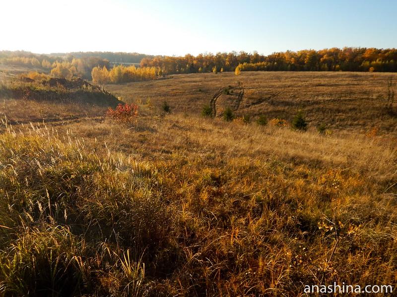 Протасовское поле, Московская область, Протасово, осень