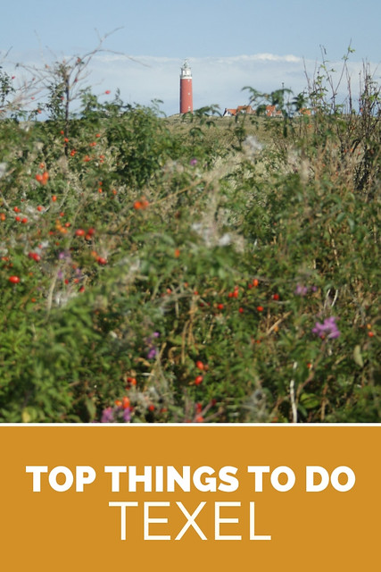 Texel, The Netherlands. Top things to do on Texel, The Netherlands | Your Dutch Guide