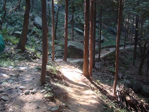 Herbst auf Yeongdo