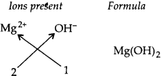 NCERT Solutions for Class 9 Science Chapter 3 Atoms and Molecules 4