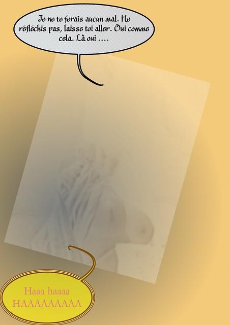 [chainon manquant] maj 26/12/18 - Page 3 44043059520_52322c610a_z