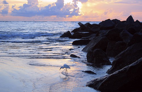 artisticsunrisephotography sunrise florida summer northernflorida 7618 unitedstates usa saintaugustineflorida villanobeach 2018 beach sea sand water atlanticocean waves ocean jetty sky cloudscape fun july2018 landscape boulders cloud horizon naturespaintbrush color lifesabeach rock snowyegret seasnow sunrays5