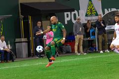 Portland Timbers vs Toronto FC 8-29-18 043