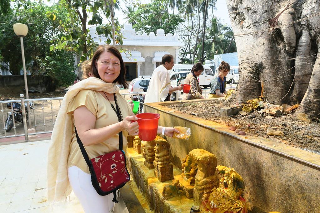 Nagaraja Snake Temple