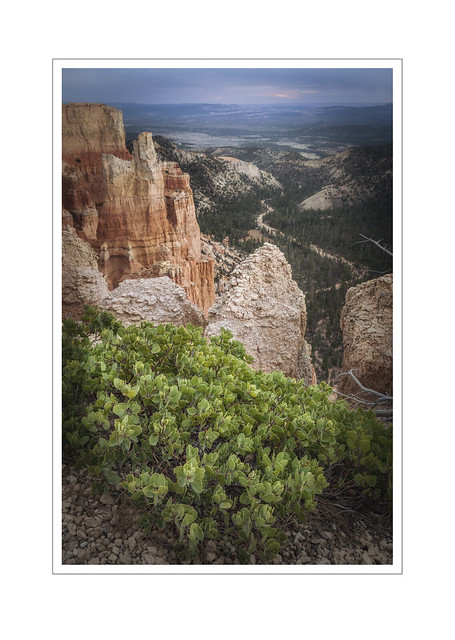 Fading light, Paria View, Bryce Canyon.