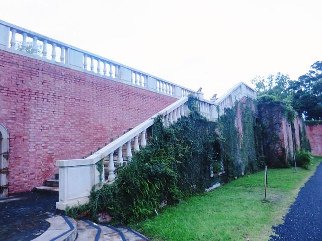 仁山植物園15
