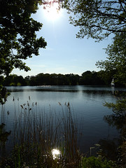 Macclesfield-201805-175-Redesmere-Mere
