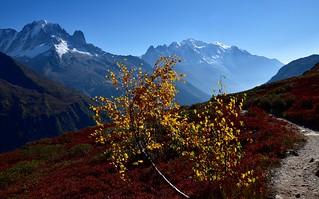 Mont Blanc en automne - Autumn Mont Blanc