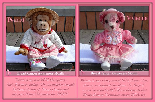 """""""Peanut (an Orangutan) and Vivian (a Teddy Bear) ask everyone to """"Please Remember to BeCome Aware of Breast Cancer!"""""""
