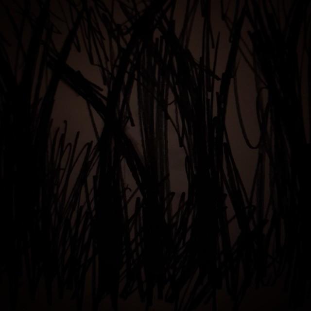 Prickly & Dark Forest