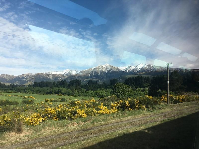 TranzAlpine train Christchurch - Greymouth