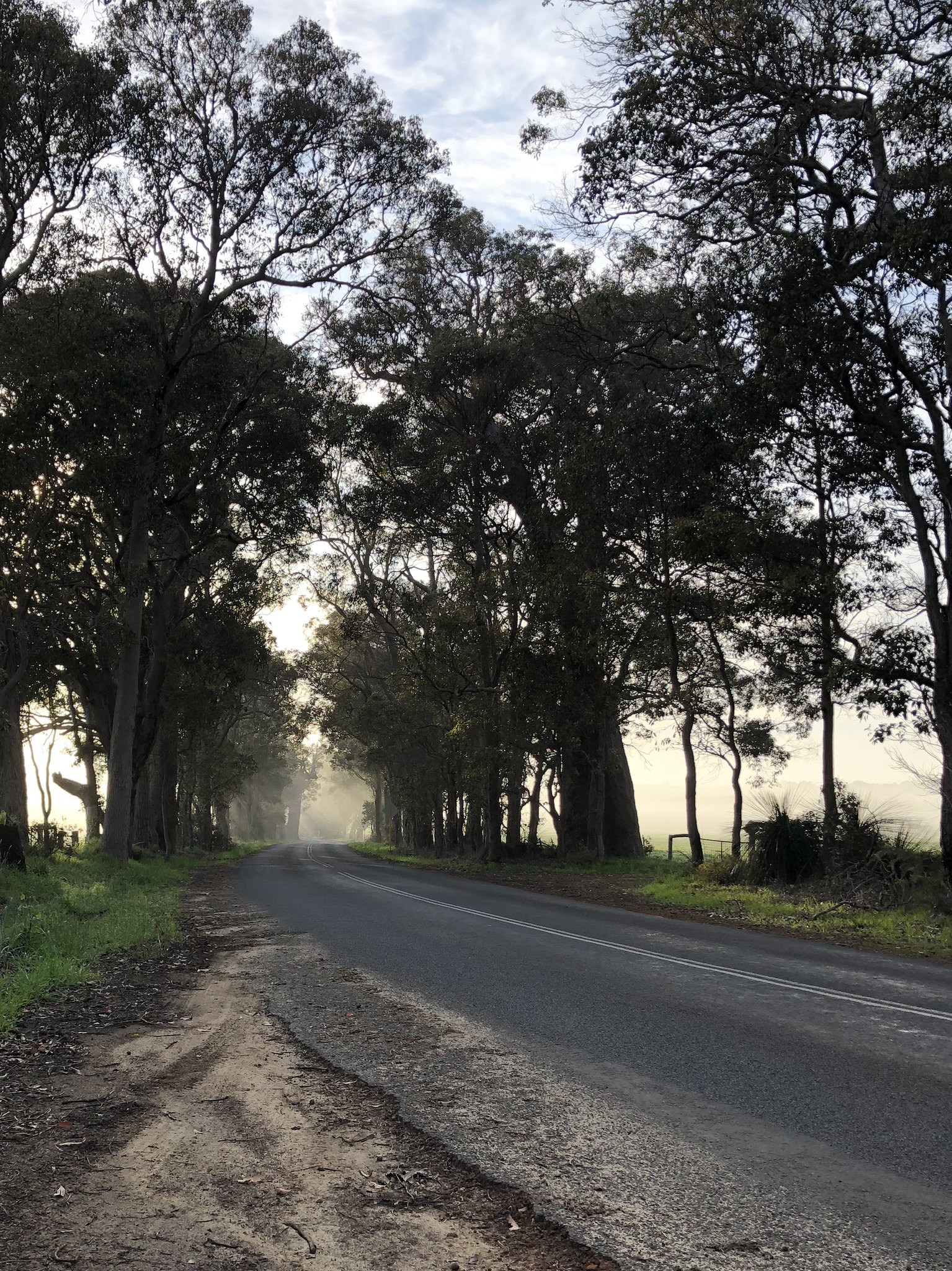 Morning Roads of Margaret River