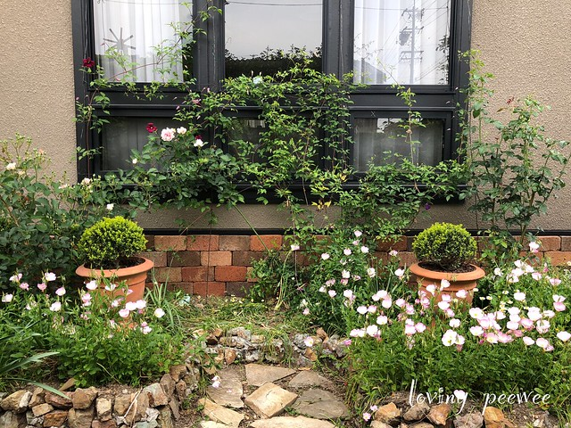 formal_garden-9