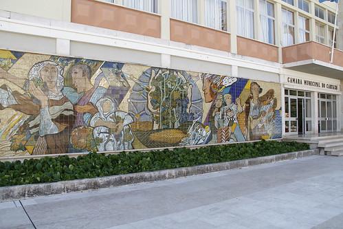 Painel Camara Cartaxo 1536