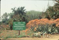 1990: Arboretum's Air Pollution Greenhouse