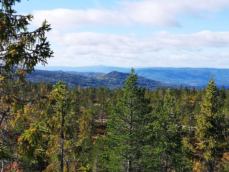 33-Utsikt mot Glomsrudkollen fra Hovlandsvarden