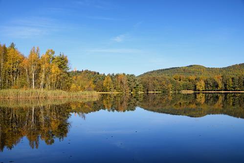 L'étang de Hanau
