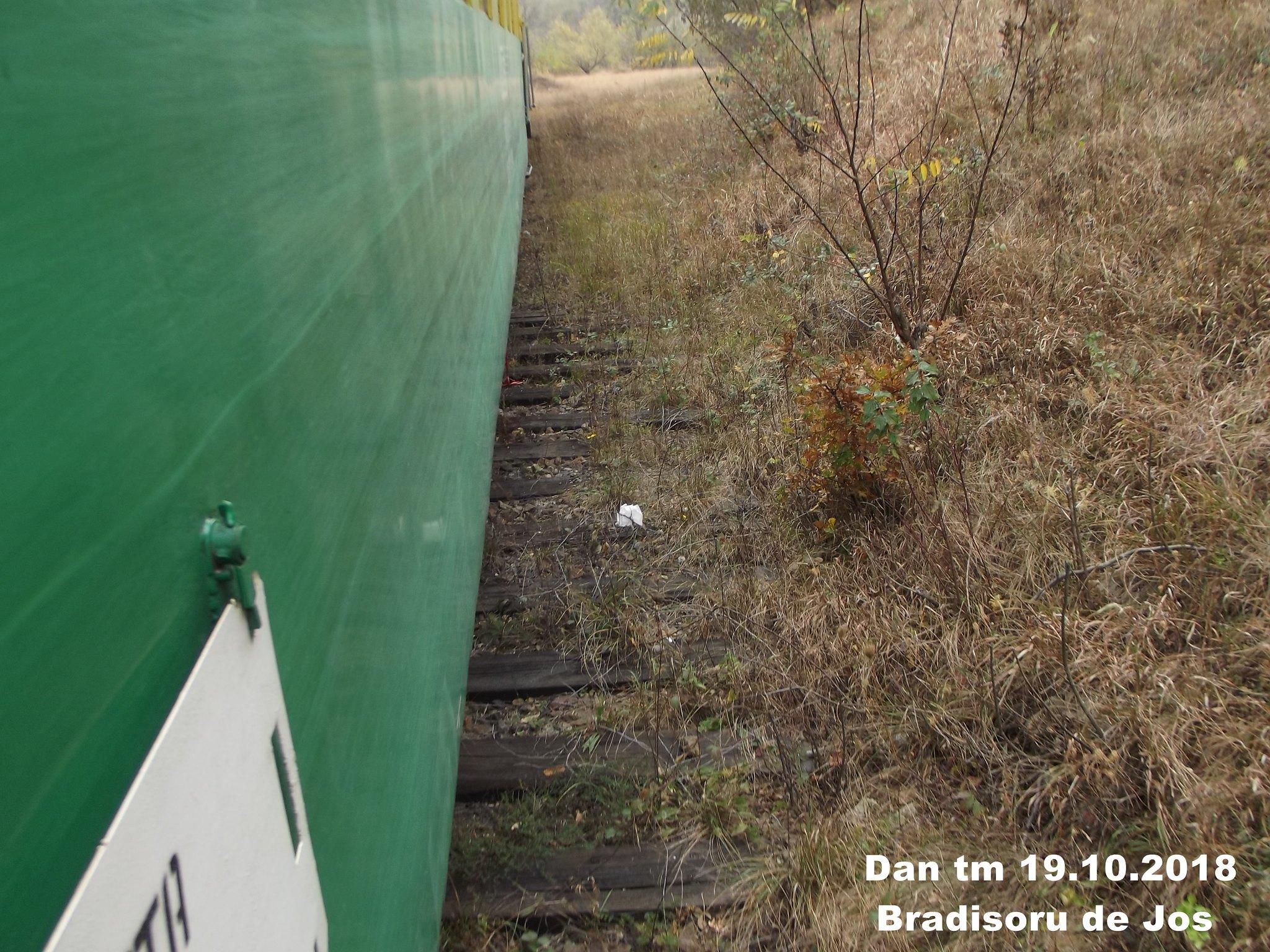 925 : Oravita - Anina - Pagina 40 44746228284_4d6f0d0aea_k