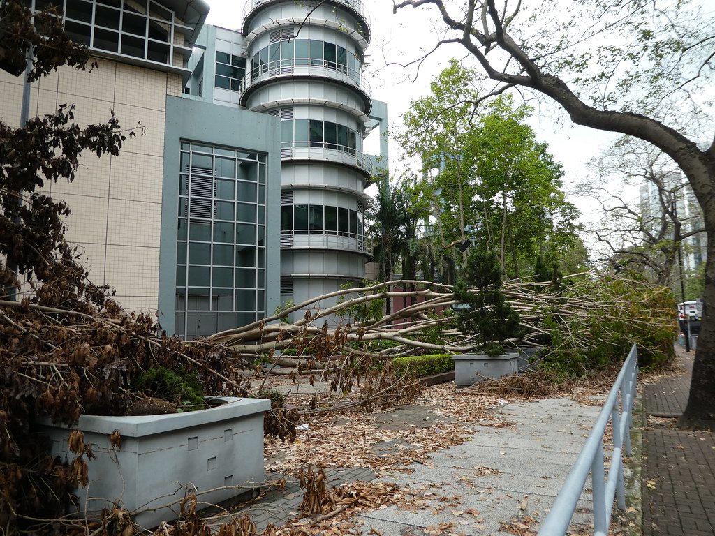 Storm damage, Hong Kong Museum of History