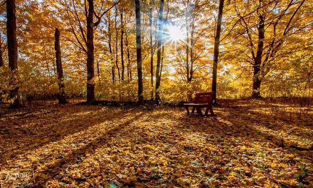 Seat in the shadows, Nikon D500, Sigma 10-20mm F3.5 EX DC HSM