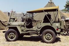 U.S. Army Jeep