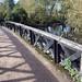 Batchworth Weir Exit & Towpath Bridge 173A, Grand Union Canal @Rickmansworth