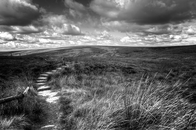Moorland Path (1), Canon EOS 5D MARK II, Canon EF 24mm f/2.8