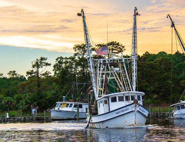 Mary Becket on Scipio Creek, Apalachicola, FL