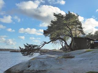 smithska udden Göteborg