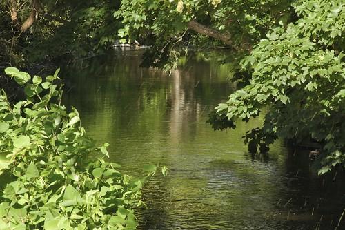 31051823 Newrath Bridge-Wicklow
