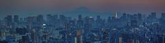 Tokyo 4487