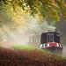 Autumn Canalside by JasonPC