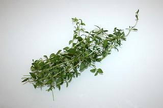 11 - Zutat frischer Thymian / Ingredient fresh thyme