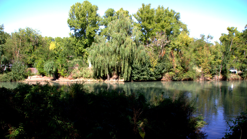 Jardines de Aranjuez 20-09-2018