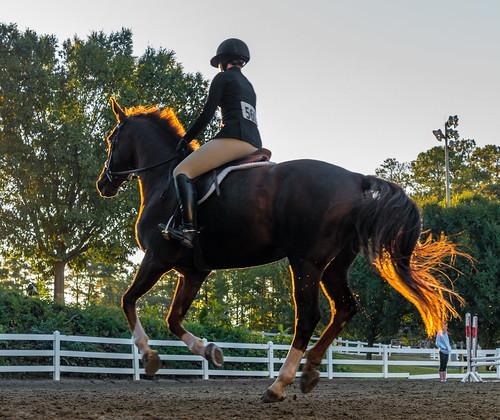 nx500 samsungnx500 equestrian choiceshot2018