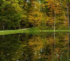 Concord Woods_20181030_06