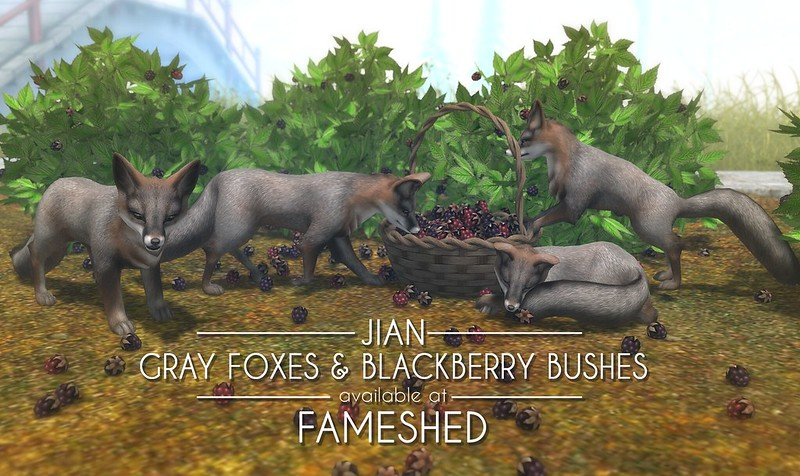 JIAN Grey Foxes & Blackberries (FaMESHed Nov '18)