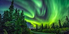 Aurora over Denali National Park