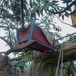 Photo of Tarzan's Treehouse