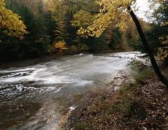 Steelhead Challenge on Mill Creek