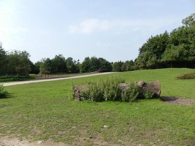 Anlage für Wapitihirsche und Bisons, Zoo Givskud