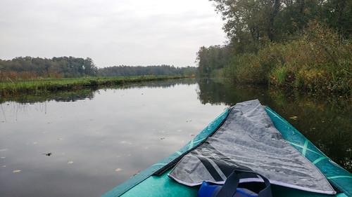 Canoe trip in De Wieden