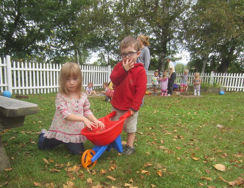 filling the wheelbarrow with leaves