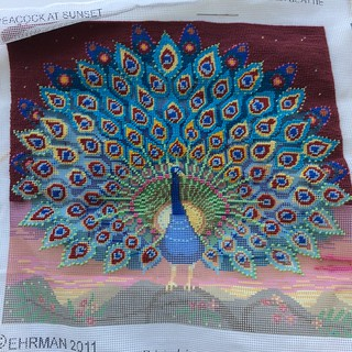 2018-09-19_Peacock-needlepoint_WIP