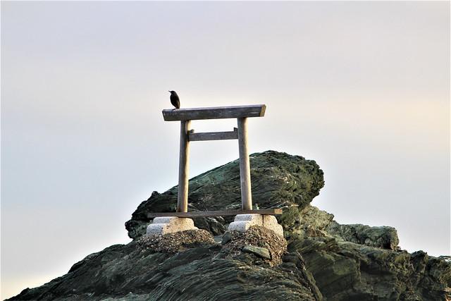 futami-meoto017
