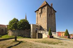 Le donjon du château d'Ardelay (Vendée)